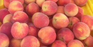 landscape Close up of peaches