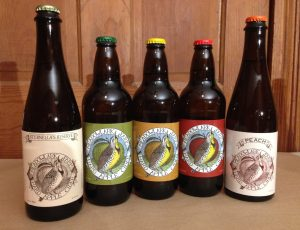 Cider Lineup